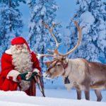 santa-and-reindeer-rovaniemi
